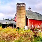 Vintage Barn and Silo by Nadya Johnson