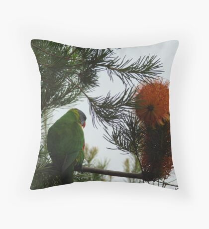Shall I or Shall I not! Throw Pillow