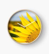 Sunflower Petals - Nobby, Australia Clock
