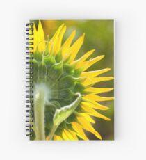 Close up of Sunflower Back - Nobby, Australia Spiral Notebook