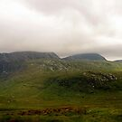 At Glenveagh #2 by Agnes McGuinness