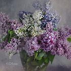 Lovely Lilacs by CJ Anderson