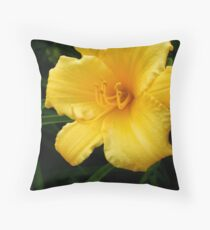 Garden Of Sun Throw Pillow