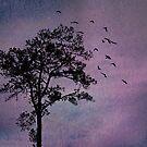 Sunday Evening, Purple Sky by Scott Mitchell