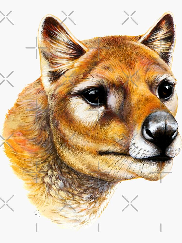 Tasmanischer Tiger / Thylacine-Porträt von antarcticpip