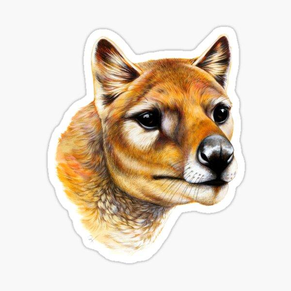 Tasmanian Tiger / Thylacine Portrait Sticker