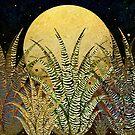"""«""""Aloe cebra dorada al sol de medianoche""""» de MarCanton"""