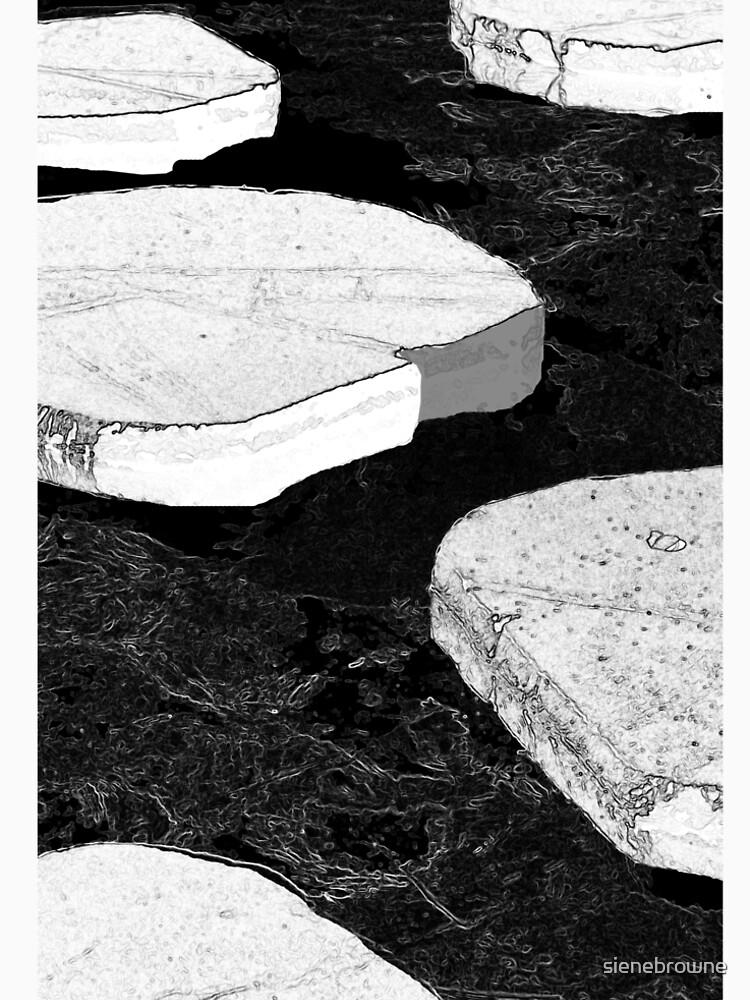 Stepping Stones by sienebrowne