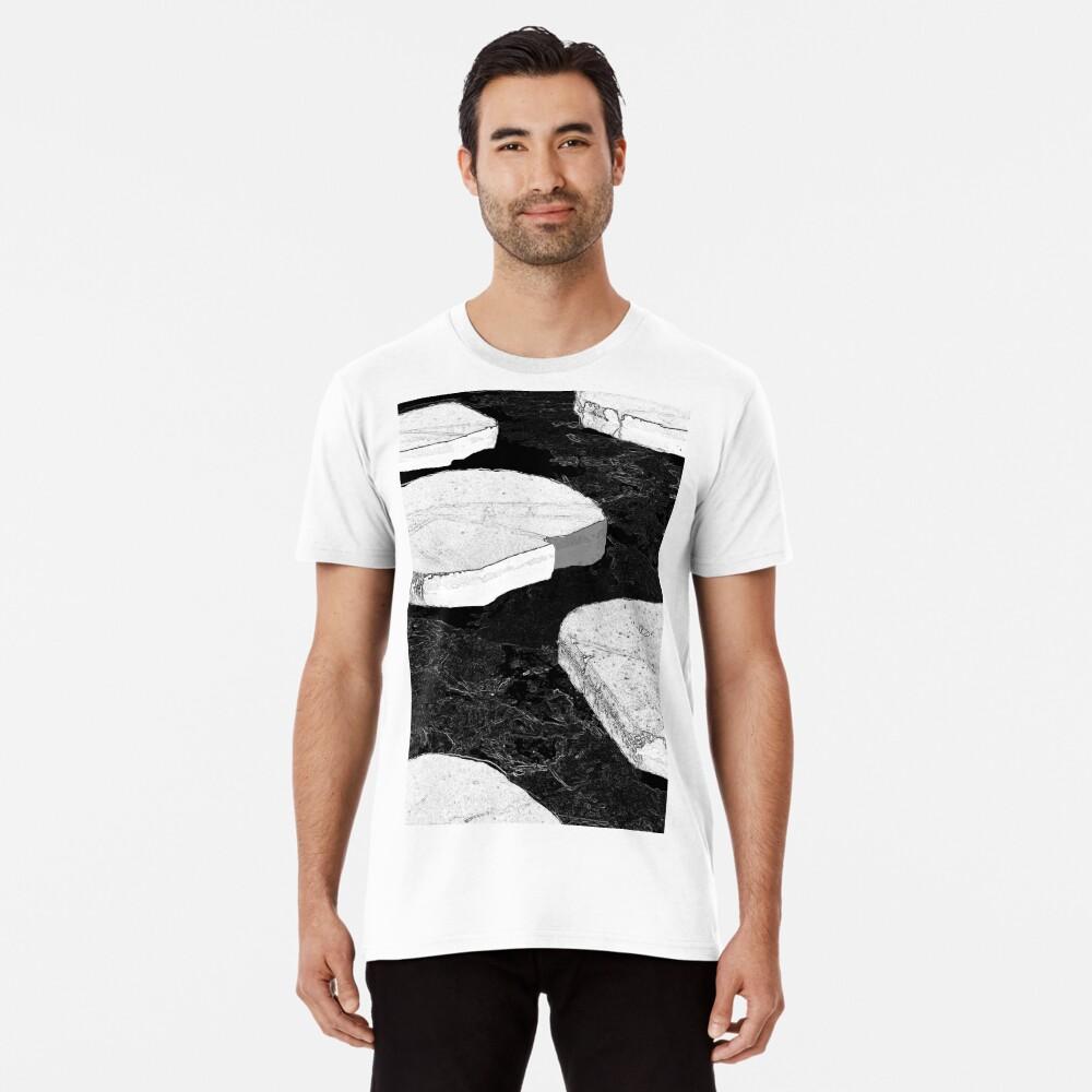 Stepping Stones Premium T-Shirt