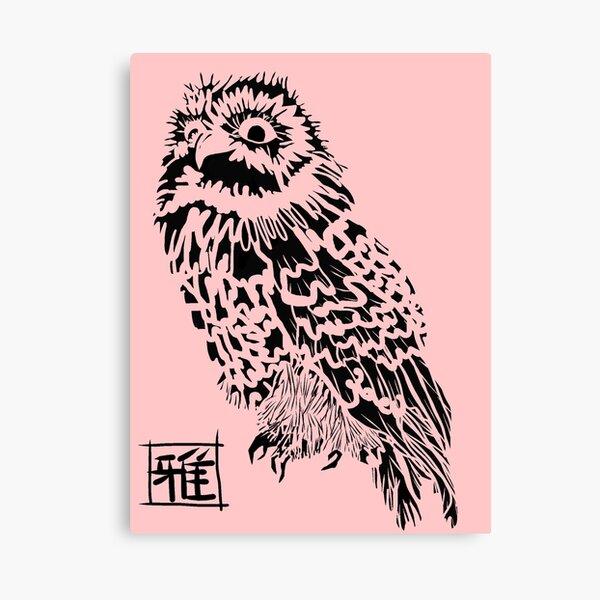 Owl Jones Canvas Print