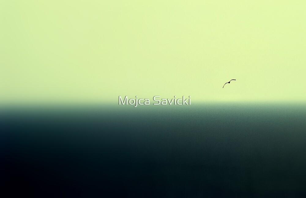 No Limits by Mojca Savicki