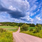 June Landscape by Veikko  Suikkanen