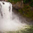 Snoqualmie Falls by Jaime Pharr