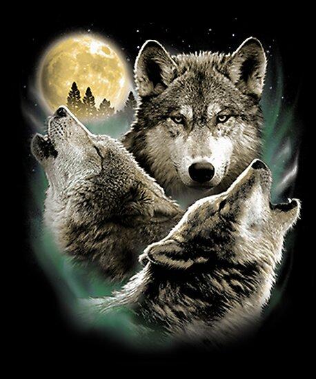 Láminas Fotográficas Tres Lobos Aullando A La Luz De La Luna De