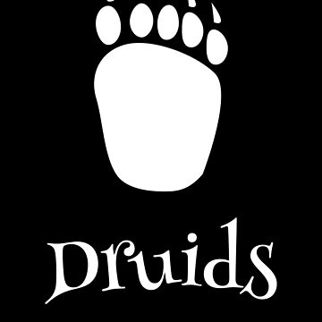 Why be wizard when you can be a bear druid by gaming-guy