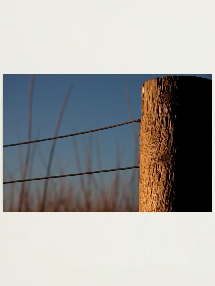 Alternate view of Texture Photographic Print