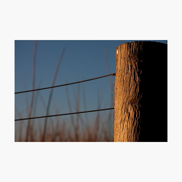 Texture Photographic Print