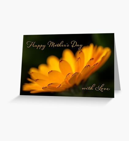 Calendula aglow - Mother's Day Greeting Card