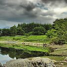 At Waters Edge by SimplyScene