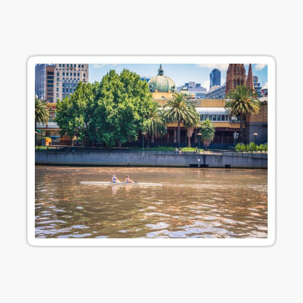 Rowing On The Yarra River Sticker