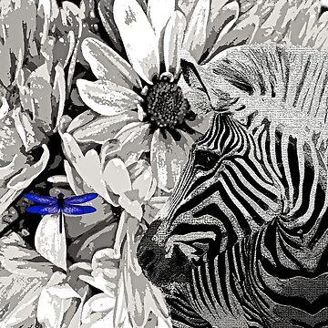 Zebra  by Overthetopsm