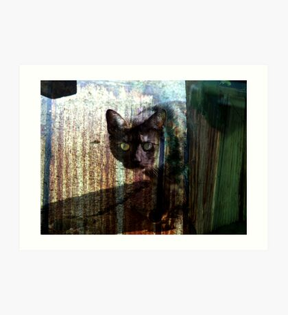 The cat with no trust Art Print