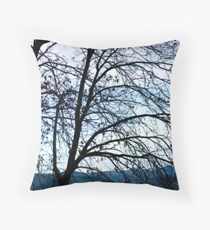Backdrop Throw Pillow