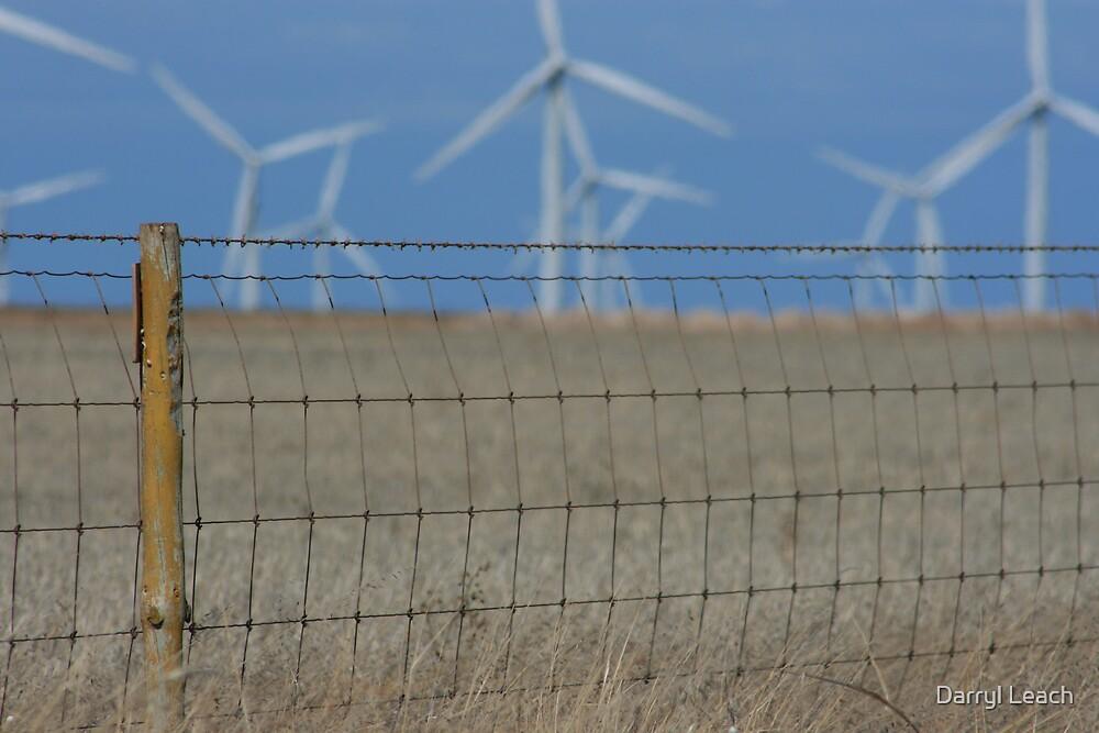 Wattle Point Wind Farm by Darryl Leach