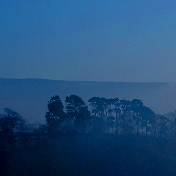 farndale blue tree line by mariasilmon