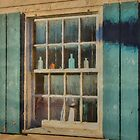 Window on the Past by Viv Thompson