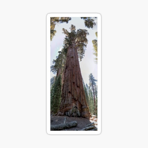 General Sherman Sticker