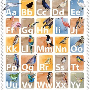 Bird alphabet poster by Redilion