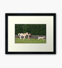 Animals party! Framed Print