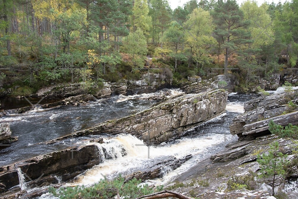 Rocks in the Blackwater by SiobhanFraser