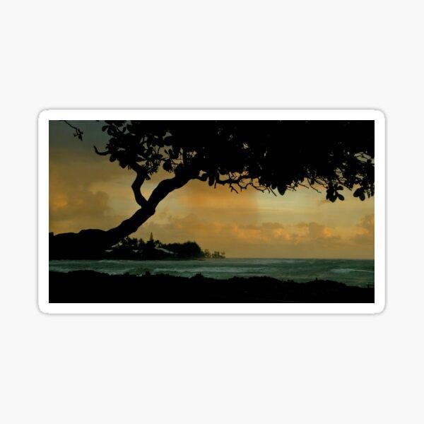 Tree Cover... Kauai Sensual Series Sticker