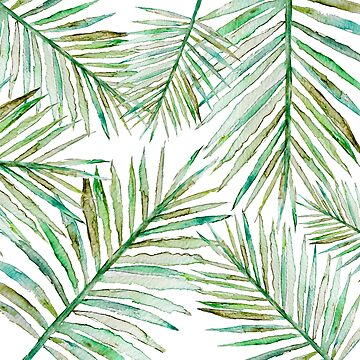 Watercolor Tropical Palm Leaf by StilleSkygger
