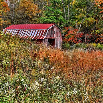 Mountain Barn In Autumn by HHPhotographyFL