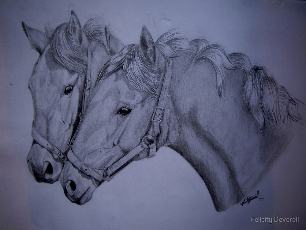 Twins by Felicity Deverell