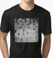 Fallout  Tri-blend T-Shirt