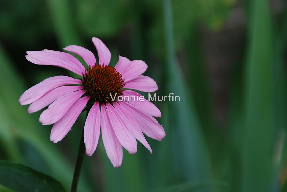 Purple Flower by Vonnie Murfin