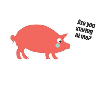 Are you staring at me - funny pig t-shirt by IncurableArtist
