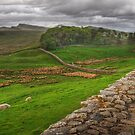 Hadrian's Wall by Peter Hammer