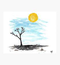 Hot Sun Blue Sky Desert Landscape Original Art Photographic Print