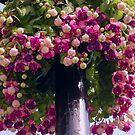 Big Blooming Basket by tonymm6491