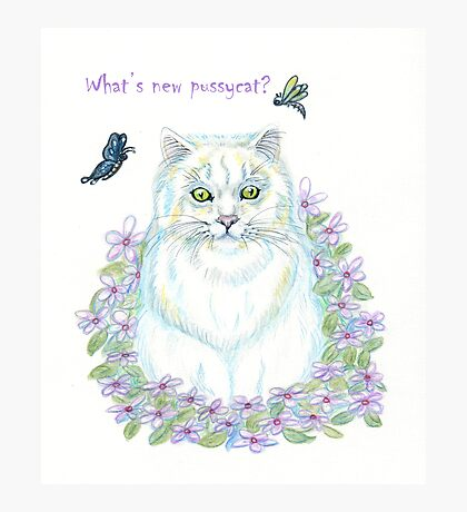 What's New Pussycat Photographic Print