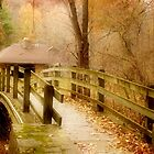 Footbridge in the Forest by Nadya Johnson