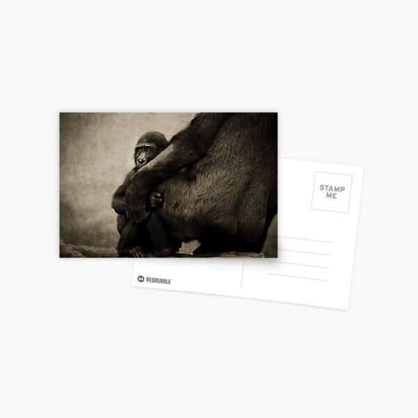 Protection Postcard