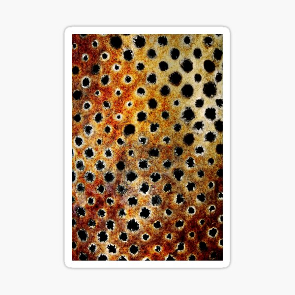 Rust Leopard Sticker