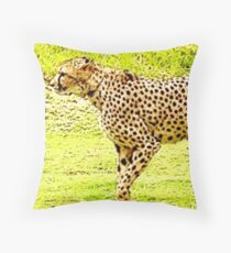"""Champion Of The Sprint"", Photo / Digital Painting Throw Pillow"