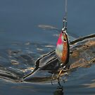 Northern Pike (Jackfish) by MaeBelle